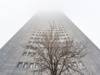 Uniriese im Nebel
